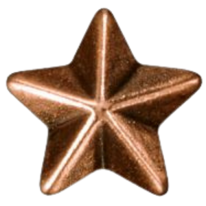 Bronze Star Device
