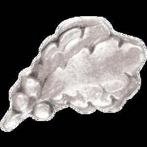 Silver Oak Leaf Cluster